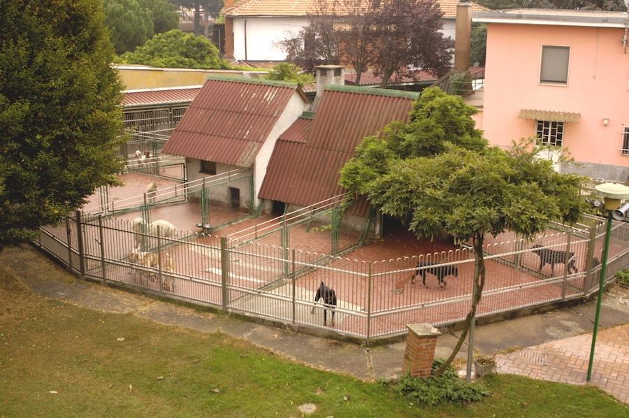Casa-Glicine